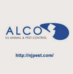 Alco Pest Control 24 Hour Pest Control In Nj