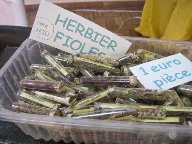 herboristerie moderne le safran