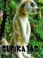 Sukirata- Amigurumi