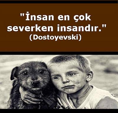 köpek, dost, çocuk, sokak köpeği, sokak çocuğu, insan, sevgi, aşk, sevmek, dostoyevski, güzel sözler, özlü sözler, anlamlı sözler,