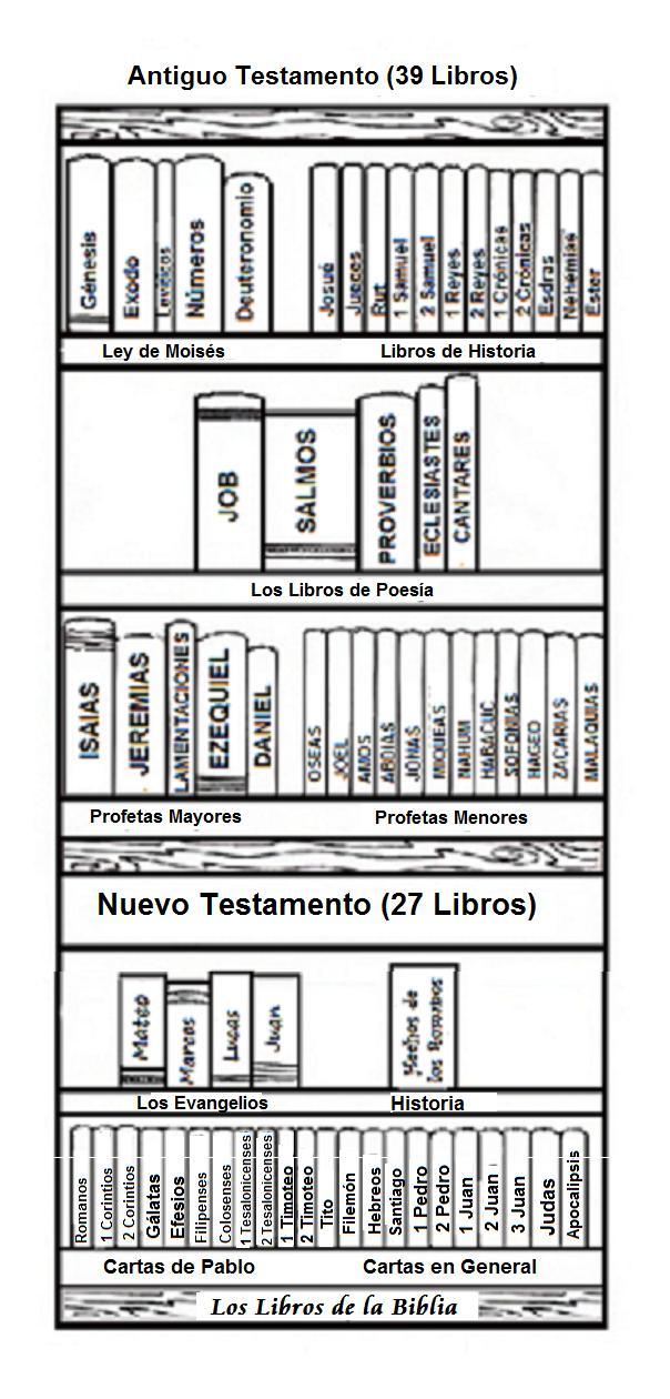 Lujoso Hojas Para Colorear Biblia Friso - Dibujos Para Colorear En ...