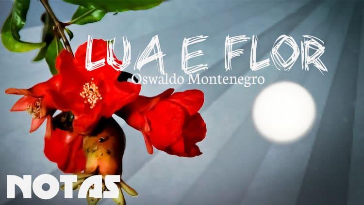 Lua e Flor - Oswaldo Montenegro - Notas melódicas