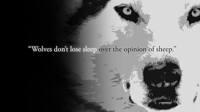Motivatonal Quotes