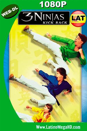 3 Ninjas Contraatacan (1994) Latino HD WEB-DL 1080P ()