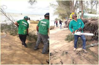 http://vnoticia.com.br/noticia/3193-meio-ambiente-remove-arvores-com-risco-de-queda-na-praia-de-guaxindiba
