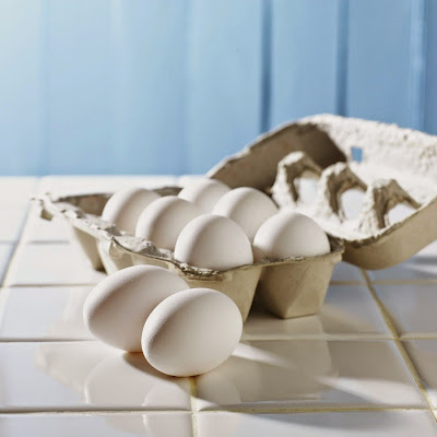 Eggs and Food Safety