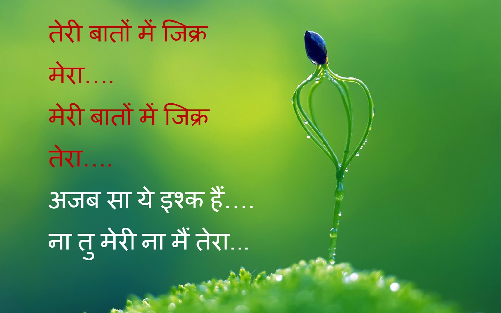 Top 25 Hindi Shayari Photos Quotes Wallpapers Latest Sms Whatsapp Status Free Download