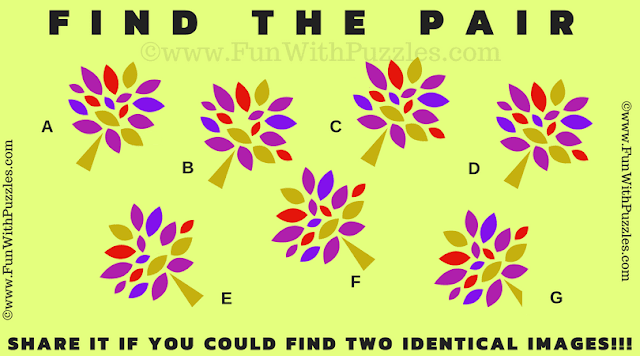 It is Find the Pair Visual Riddle Quiz in which one has to find the match pair in given puzzle image
