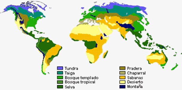Bioma : Pengertian, Fungsi dan Macamnya