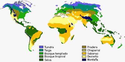 Bioma: Pengertian, Fungsi dan Macam