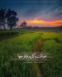 صور جميلة للفيس بوك