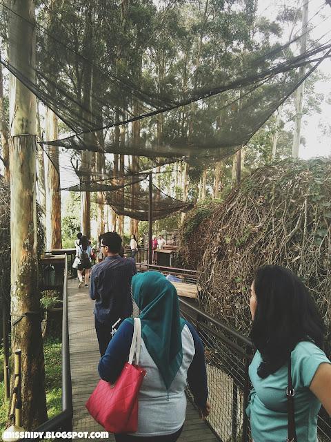 lutung kasarung resto dusun bambu lembang