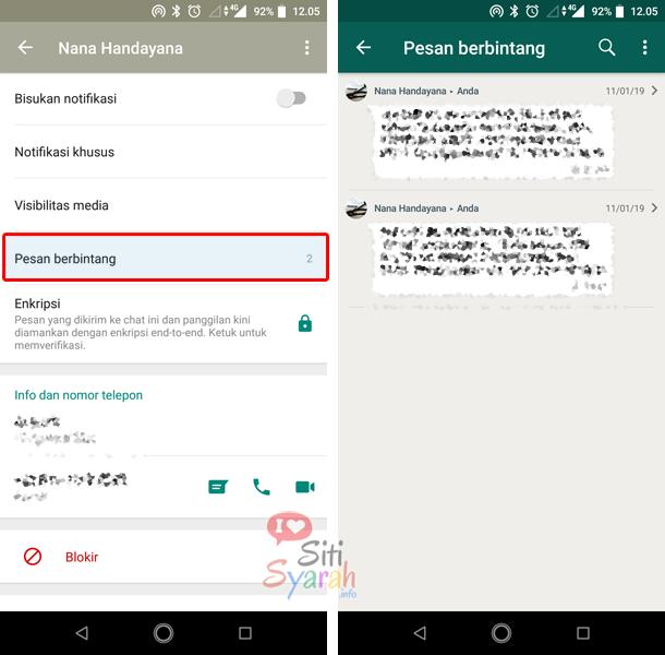 cara mengetahui pesan berbintang di whatsapp