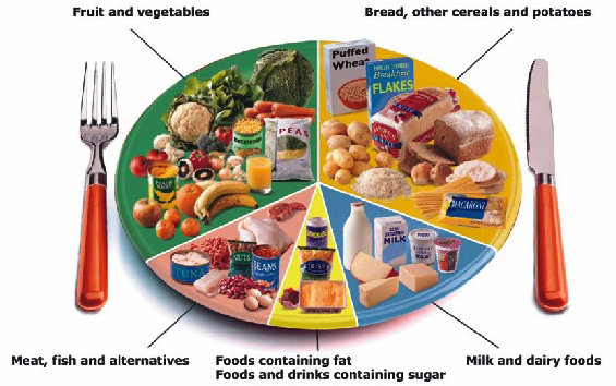 What is the Difference Between Nutrition and Nutrients?