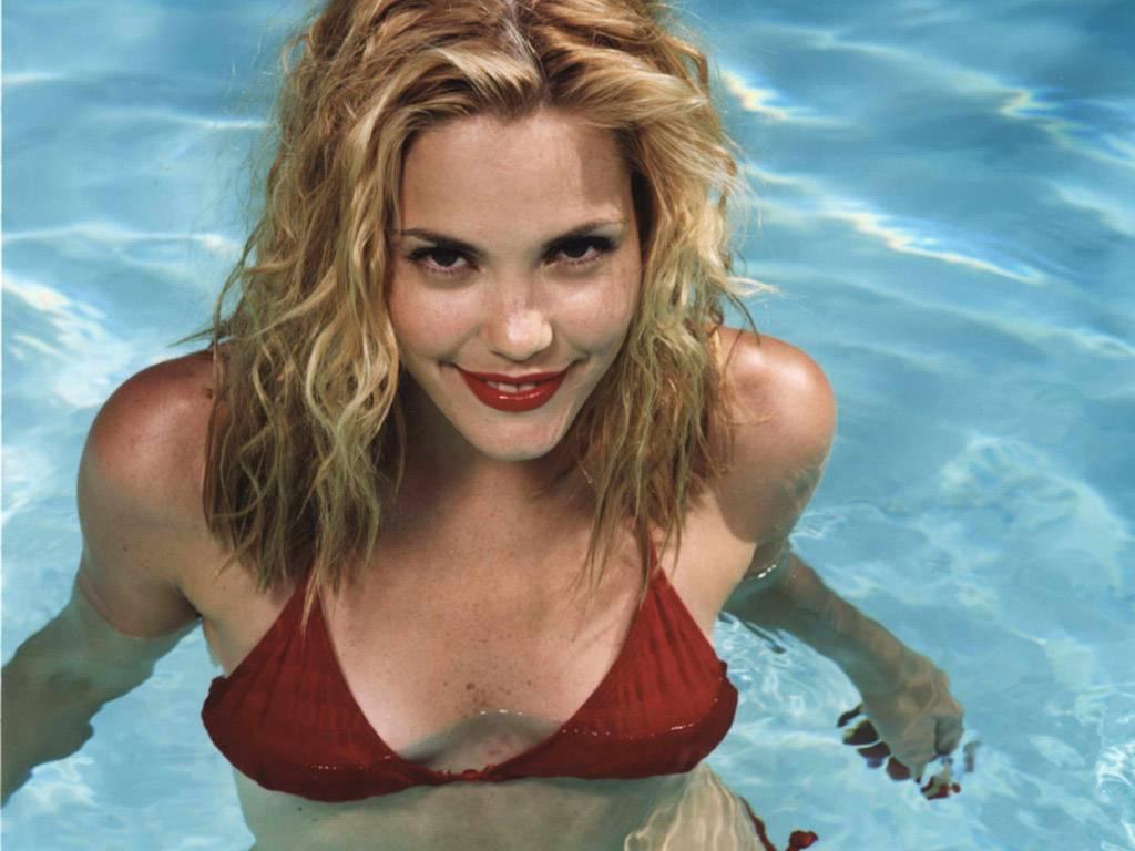 Hollywood actress Leslie Bibb in hot bikini photos - The ...