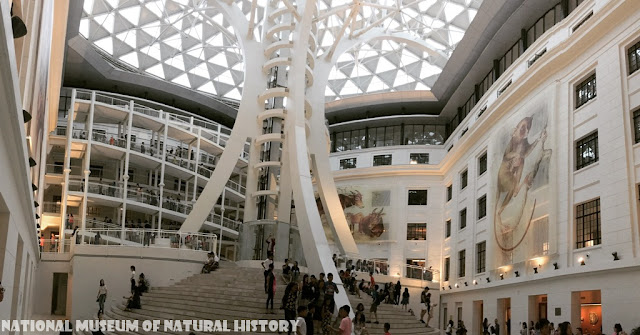 National Museum of Natural History 2020