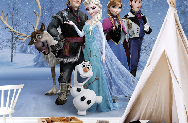 http://www.photowall.fi/photo-wallpaper/categories/disney-frozen