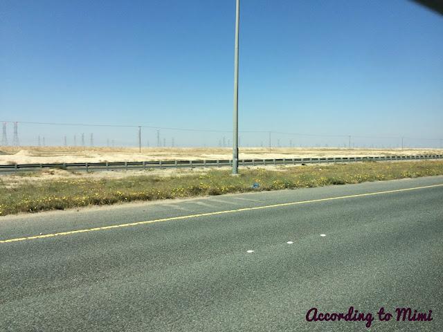 The drive up to the Al Bohayra Mazraa, aka the Blue Lake Farm