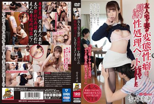 AQSH-041_cover
