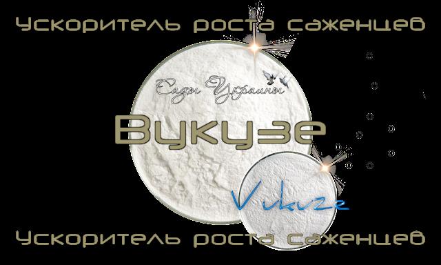 Ускоритель роста саженцев грецкого ореха и фундука Vukuze
