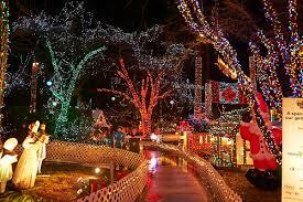 Stanley Park Christmas Bright Lights