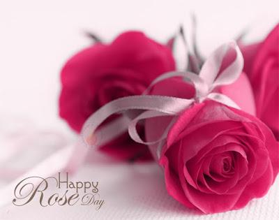 Pink Rose Day 2017