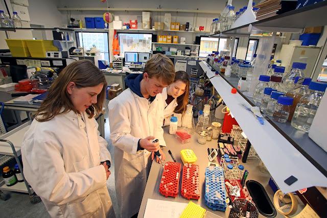 هولندا.. منحة دراسية للطلاب الأجانب من خارج المنطقة الاقتصادية الأوروبية