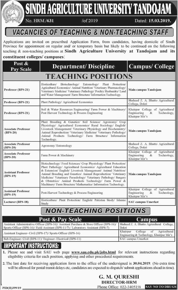 Sindh Agriculture University Tandojam Jobs March 2019