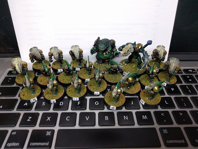 Fully painted team photoed on laptop
