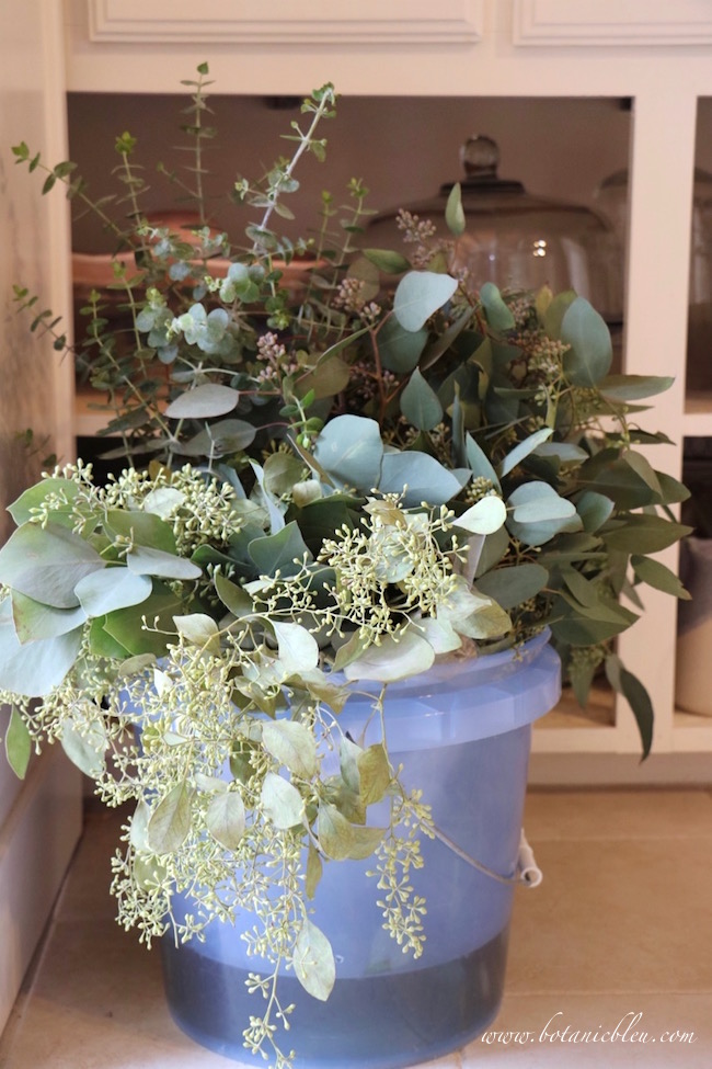 seeded-eucalyptus-blue-water-bucket