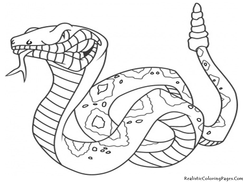 anaconda coloring pages