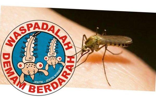 Hasil gambar untuk penyakit DBD (Demam Berdarah Dengue)