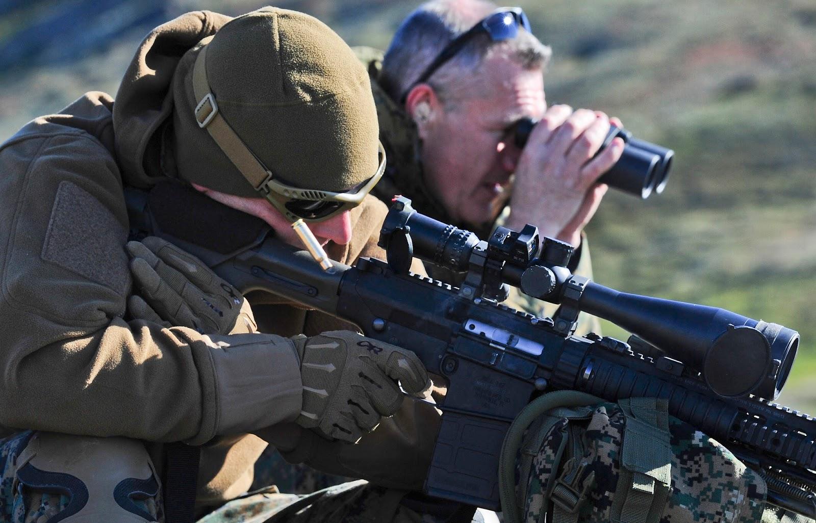 Guerreros de Élite: El Manual Táctico de los SWAT nº6