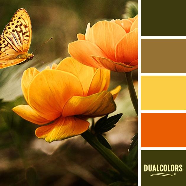 color_paleta_26