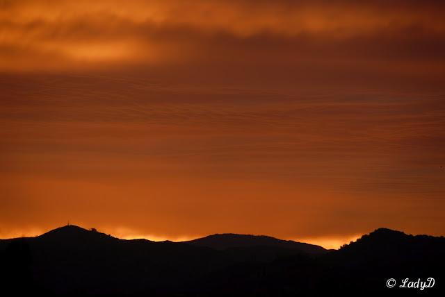 Glowing Orange Sunrise: LadyD Books