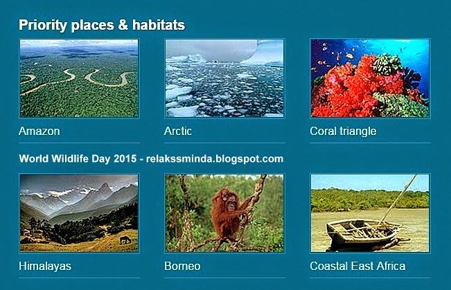 Hari Hidupan Liar Sedunia - World Wildlife Day