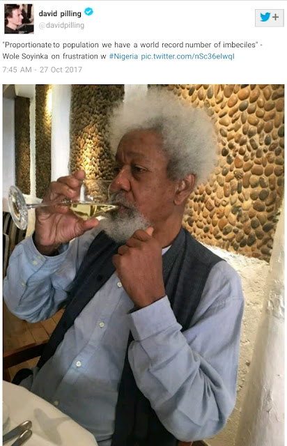 """""""Proportionate to population, Nigeria has a world record number of imbeciles"""" - Wole Soyinka"""