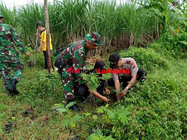 Lestarikan Lingkungan, Personel Koramil 0821/01 Lumajang Laksanakan Penghijauan Bersama Masyarakat