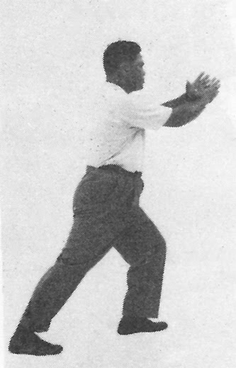 Tai Chi Chuan (Square Form) 108. Step Back To Ride The Tiger