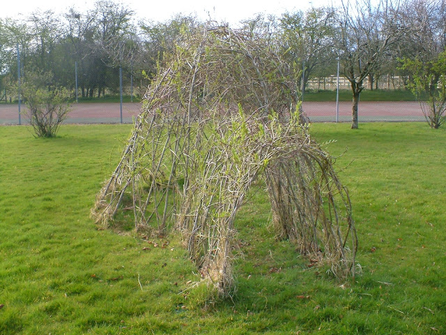 Picture of living willow igloo sculpture suppliers and kits