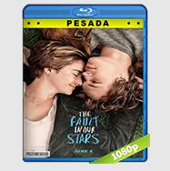 Bajo La Misma Estrella (2014) HD BrRip 1080p (PESADA) Audio Dual LAT-ING