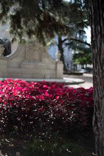 plaza de la constituicion montevideo flores