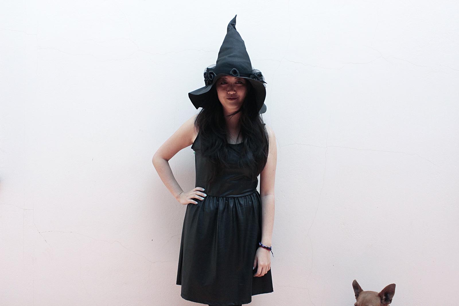 bruxa e cachorra que acha que é gato