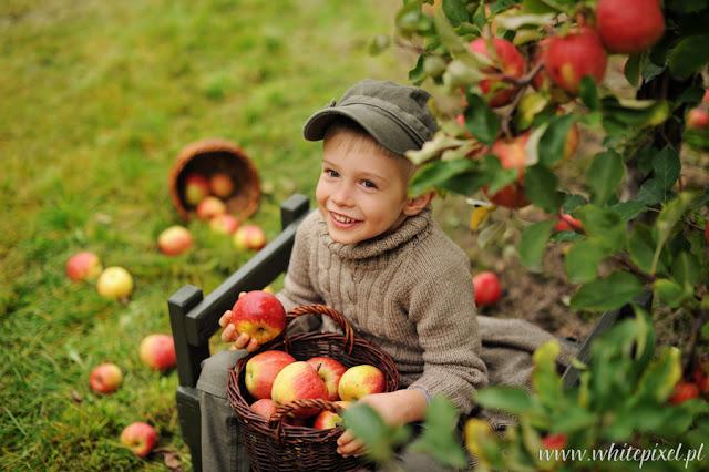 mały uśmiechnięty chłopiec w sadzie trzyma kosz z jabłkami