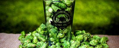 hops, farm, brewery