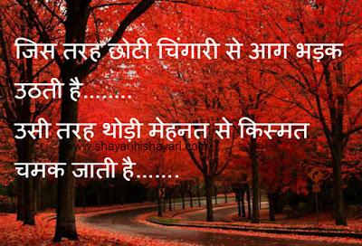 Top30 supar best bewafai sayri images Hindi Language Shayari Pics free Wallpapers