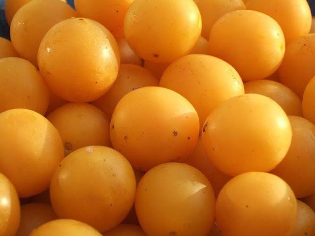 aalubukhara, prunes, home remedies,