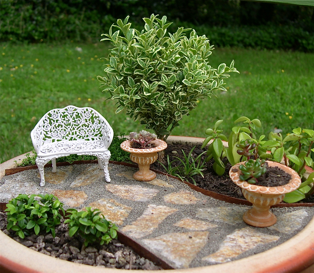 tu organizas mini jardins em vasos. Black Bedroom Furniture Sets. Home Design Ideas