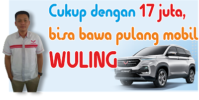 sales wuling
