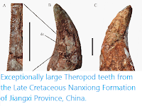 http://sciencythoughts.blogspot.co.uk/2015/02/exceptionally-large-theropod-teeth-from.html